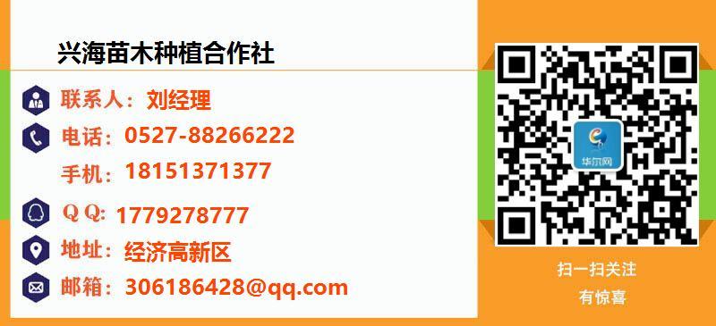 兴海苗木种植合作社名片