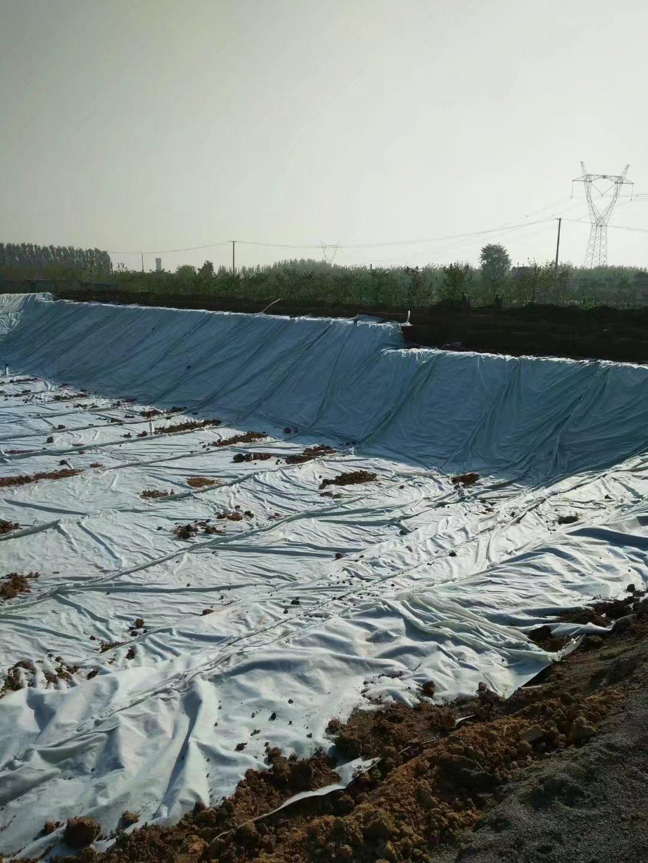 竹溪防水板生產廠家)人工濕地專用