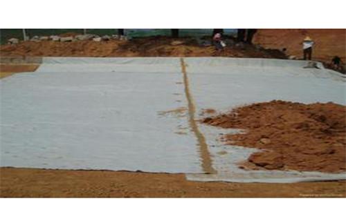 井陉矿防渗透耐腐蚀膨润土防水毯高质量