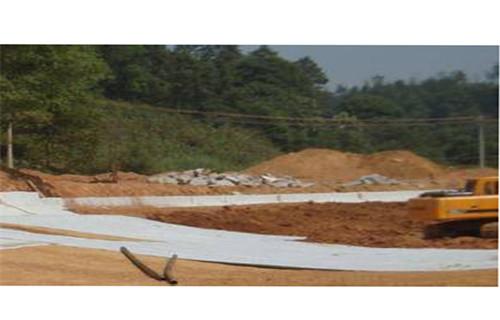 前进复合防水毯厂家生产